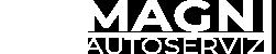 Autoservizi Magni Cassino Logo